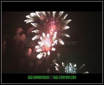 节日焰火-向日葵